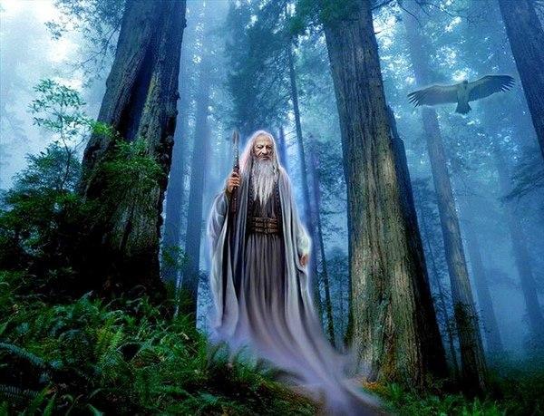 шаман, друид, мудрец, мольфар, забытые предки, сказки, легенды, притчи, метафоры