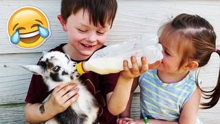 Ultimate Cutest Kids and Animals Compilation! Funny Baby Videos | August 2018