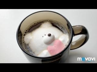 Мишка marshmallow обрастает шерсткой