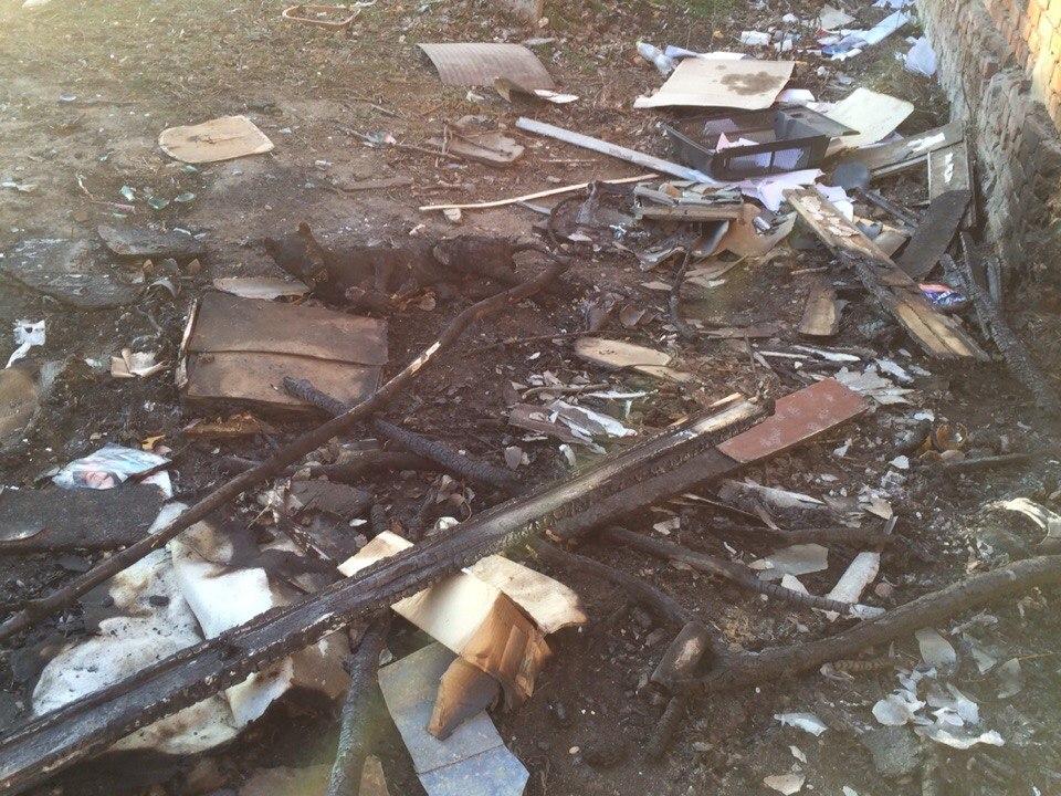 В Ростовской области живодеры заживо сожгли собаку