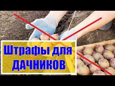 ШТРАФЫ ДЛЯ ДАЧНИКОВ о которых Вы не знали Штраф за посадку картошки и много другое