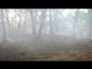 Дымная Гора 5