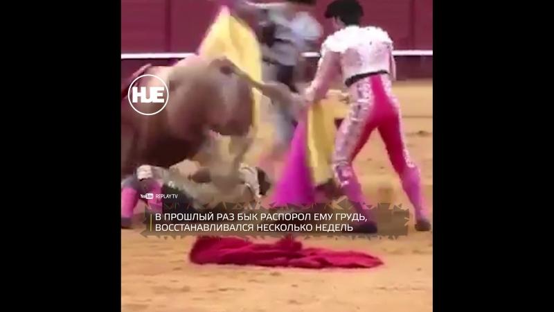 Матадору серьезно досталось от быка на корриде