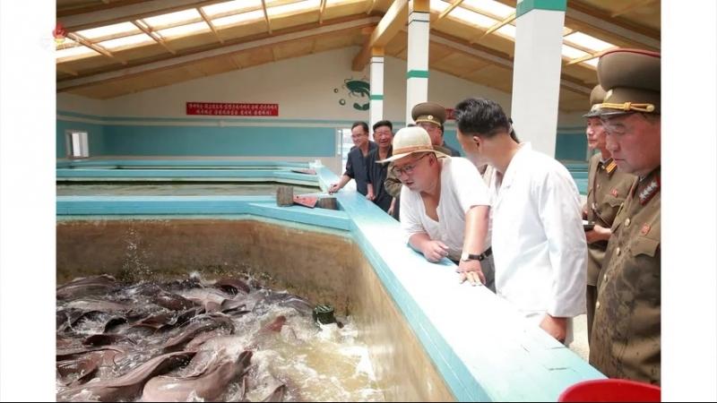 경애하는 최고령도자 김정은동지께서 삼천메기공장을 현지지도하시였다