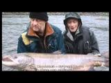 Любительское рыболовство. Дом для лосося.