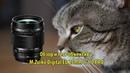 Объектив M.Zuiko Digital ED 25mm 11.2 PRO - обзор и тест