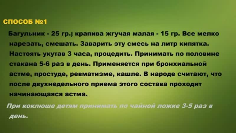 АСТМА БРОНХИАЛЬНАЯ. АСТМА ЛЕЧЕНИЕ НАРОДНЫМИ СРЕДСТВАМИ
