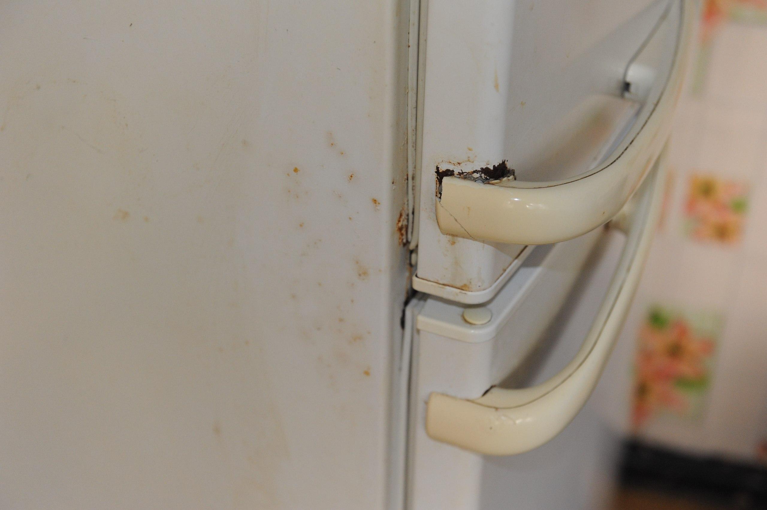 Замена своими руками уплотнителя холодильника стинол 20