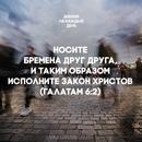 Ирина Вовченко фото #20