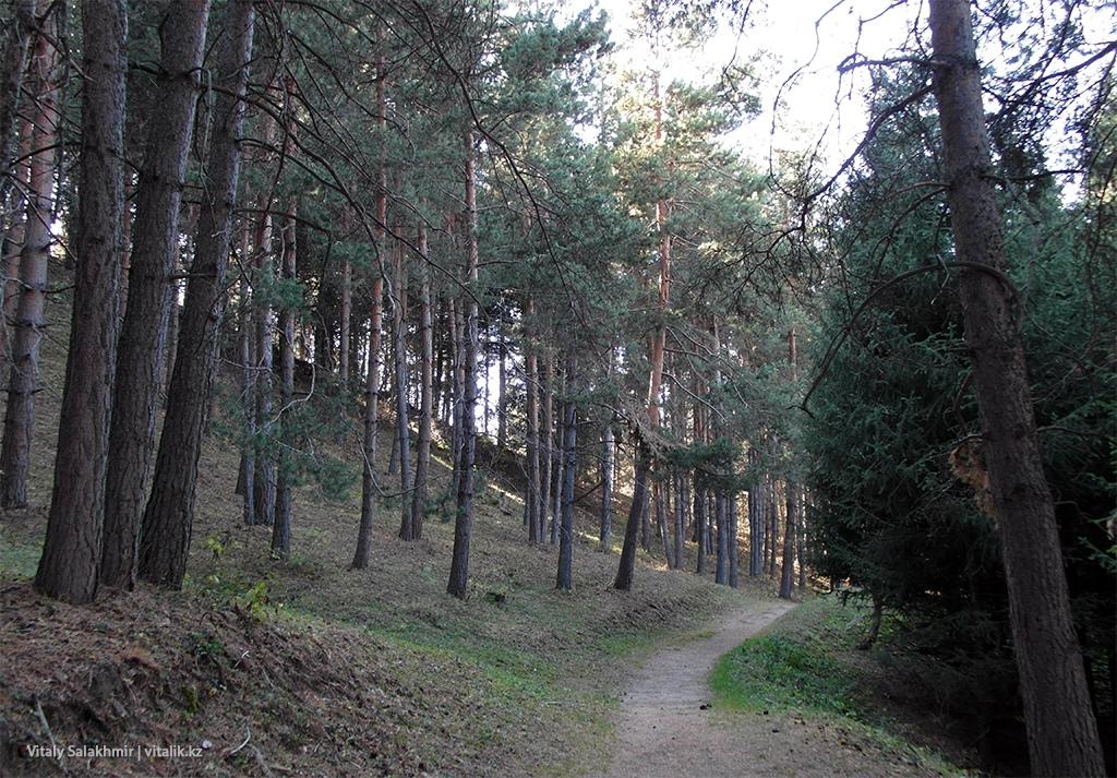 Лесные тропы Медеу Бутаковка 2018