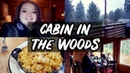 I Went to a Cabin in the Woods to Write