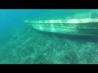 Второе погружение. Подводный мир Эгейского моря. Дух захватывает.