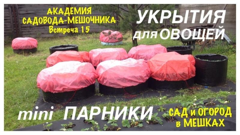 Мини ПАРНИКИ и УКРЫТИЯ. Академия САДОВОДА-МЕШОЧНИКА. Встреча 15. Mini GREENHOUSES and SHELTERS.