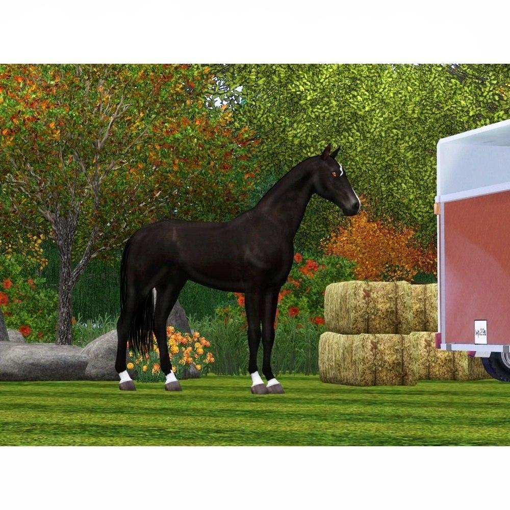 Регистрация лошадей в RHF 1.1 - Страница 2 8d5gDHchRPM