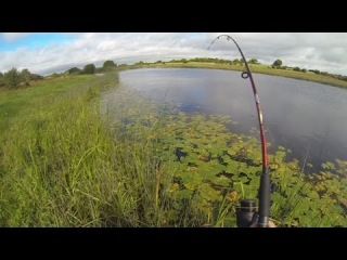 Pike fishing with lures: catching a trophy fish of a day. Рыбалка: трофейная щука на воблер.