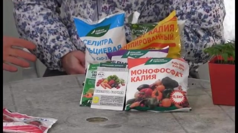 Рыбинский агроном Игорь Басков об использовании удобрений в открытом грунте