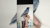 Ворон the Raven Watercolor