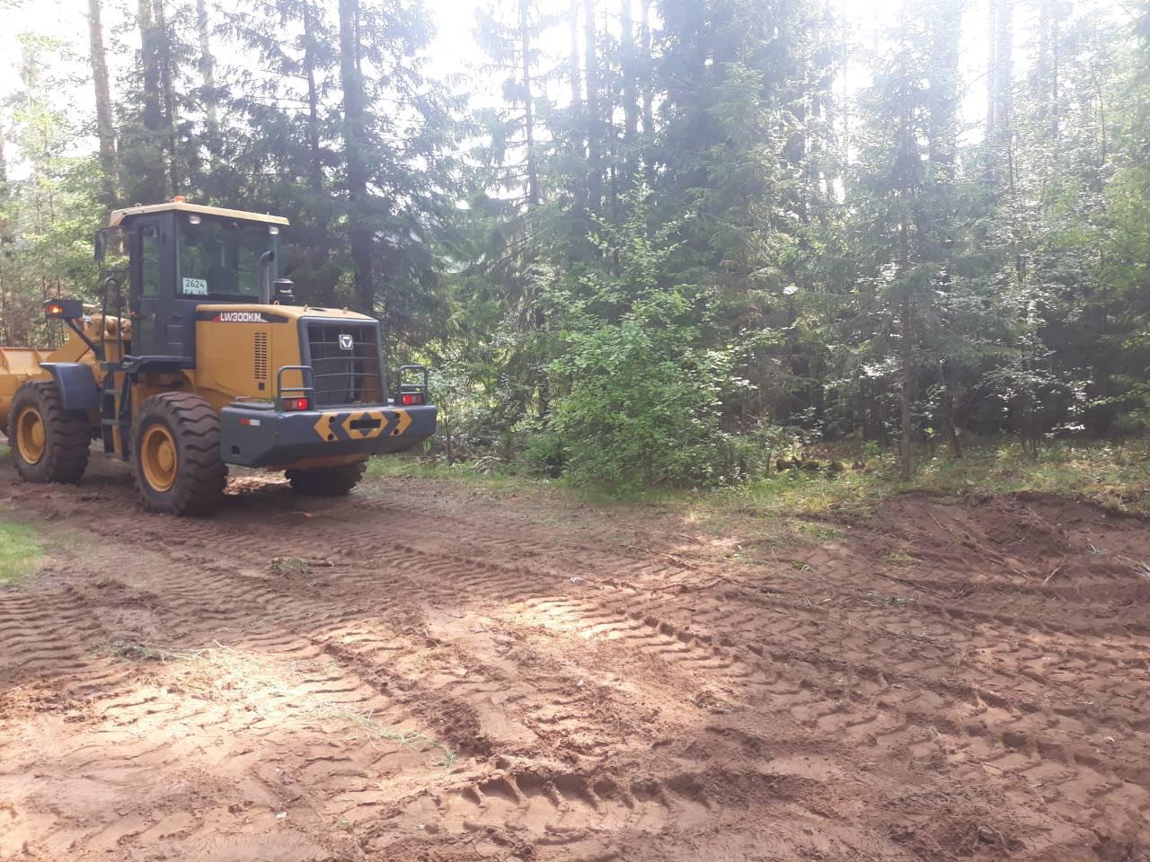 битумная лужа в лесу, 2018 год
