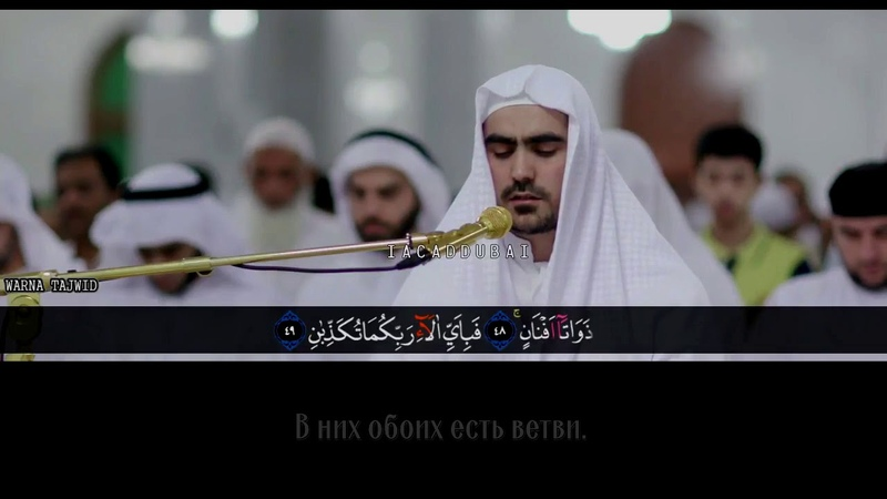 Сиратулла Раупов. Сура ар-Рахман