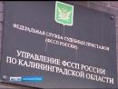 В Калининграде прокуратура заставила наказать судебных приставов
