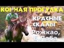 Прогулка на лошадях по горам в Рожкао