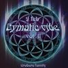 Cymatic vibe vol. II