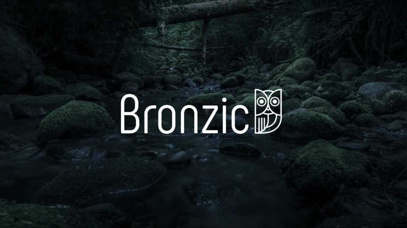 Логотип для интернет-магазина бронзовых фигурок - Bronzic