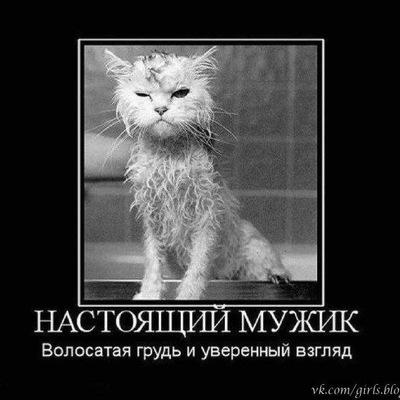 Vilhelm Conrad, 10 мая 1986, Ульяновск, id209993604