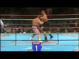 Butterbean knockouts