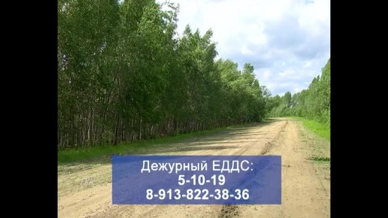 МЧС до 20 июля в Томской области местами сохранится высокая пожароопасность