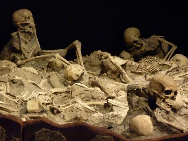 Жестокая смерть у подножия Везувия Не знаю почему, но до сегодняшнего момента исследователей и просто любопытных не отпускает история с гибелью людей в августе 79 года нашей эры у предгорий