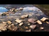 Stoneface &amp Terminal and Ana Criado - One Heart (Gal Abutbul Remix) ASOT 643 HD