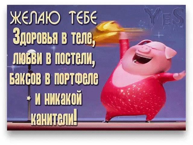 https://pp.userapi.com/c543103/v543103459/36e27/A25_pRWwOPQ.jpg