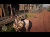 Never stealing from horses again. Red Dead Redemption 2