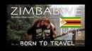 Зимбабве | Водопад Виктория | Местная харчевня | Часть 1 | Путешествие по Африке на авто