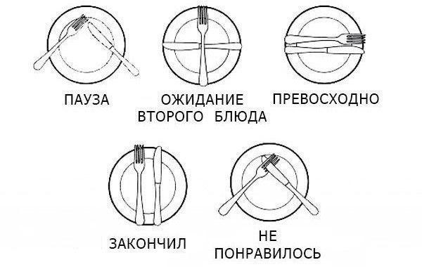 1000 Правил Сервировки И Столового Этикета
