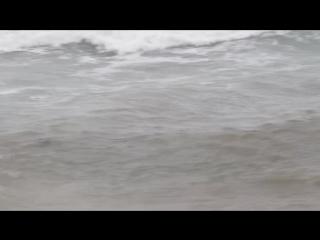Крещенские купания. Феодосия. 2017