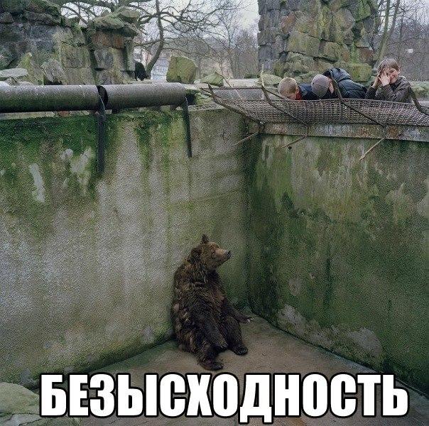 http://cs417519.userapi.com/v417519421/196b/6eppOfnoi0c.jpg