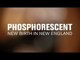 Phosphorescent - New Birth in New England (Live at The Current)