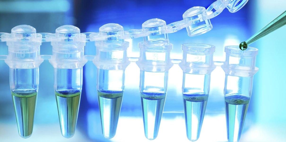 Томские ученые представили сенсоры на основе органических молекул