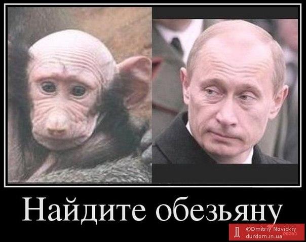 """Путин о выполнении Россией минских договоренностей: """"Мяч на стороне украинских властей. Они, прежде всего, должны их выполнять"""" - Цензор.НЕТ 5797"""