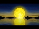 GOOD NIGHT MUSIC | Pure Healing SLEEP Music ➤ 528Hz Heal While Sleeping ➤ Wake Up Refreshed