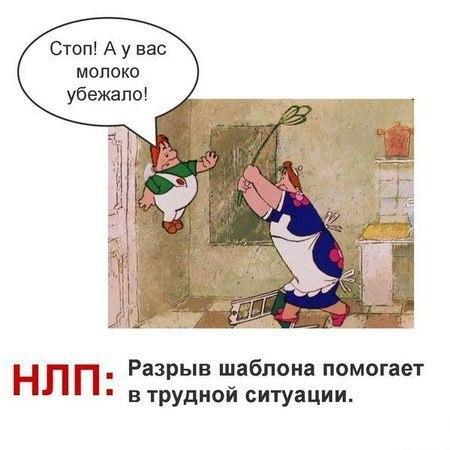 http://cs613524.vk.me/v613524704/233a/FgZDHR5Gweo.jpg