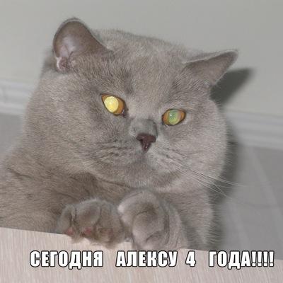 Анастасия Смирнова, 10 июля , Санкт-Петербург, id4110948