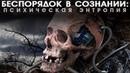 Беспорядок в сознании психическая энтропия Nikosho аудиокнига