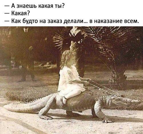 Аника Черныш | Санкт-Петербург