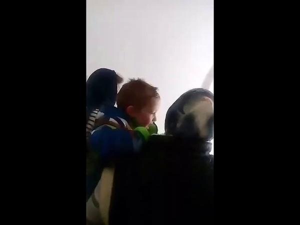 Деточка поет в храме. Честнейшую Херувим. Хорошее видео.