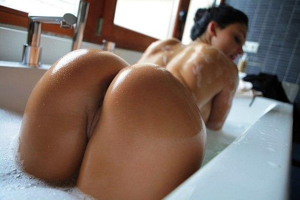 фото круглые попы порно