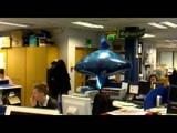 Flying Shark Balloon
