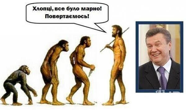 """Тимошенко не верит в """"пришествие Януковича"""": """"На парашюте с самолета или он через границу на коленях проползет?"""" - Цензор.НЕТ 6447"""